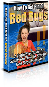 BedBugs-3D-Medium