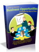 Business Opportunities PLR Ebook