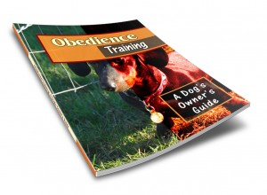 Obedience-COVER