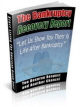 Bankruptcy Recovery Guide PLR Ebook