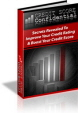 Credit Score Confidential PLR Ebook