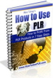 How To Use PLR Ebook