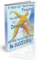 Traits For Success PLR Ebook