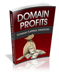 domain profits