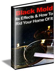 Black_Mold