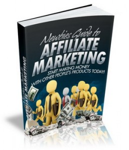 Newbies Guide To Affiliate Marketing!