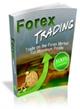PLR Ebook Forex Trading