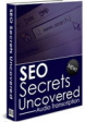 SEO Secrets PLR Ebooks