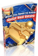 Need to Know About Real Estate PLR Home Ebook