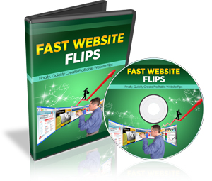 Fast Website Flips PLR Video