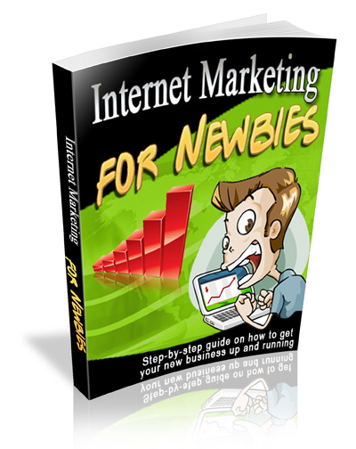 PLR Internet Marketing For Newbies
