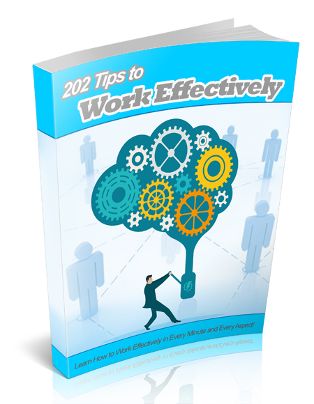 MRR 202 Tips to Work Effectively