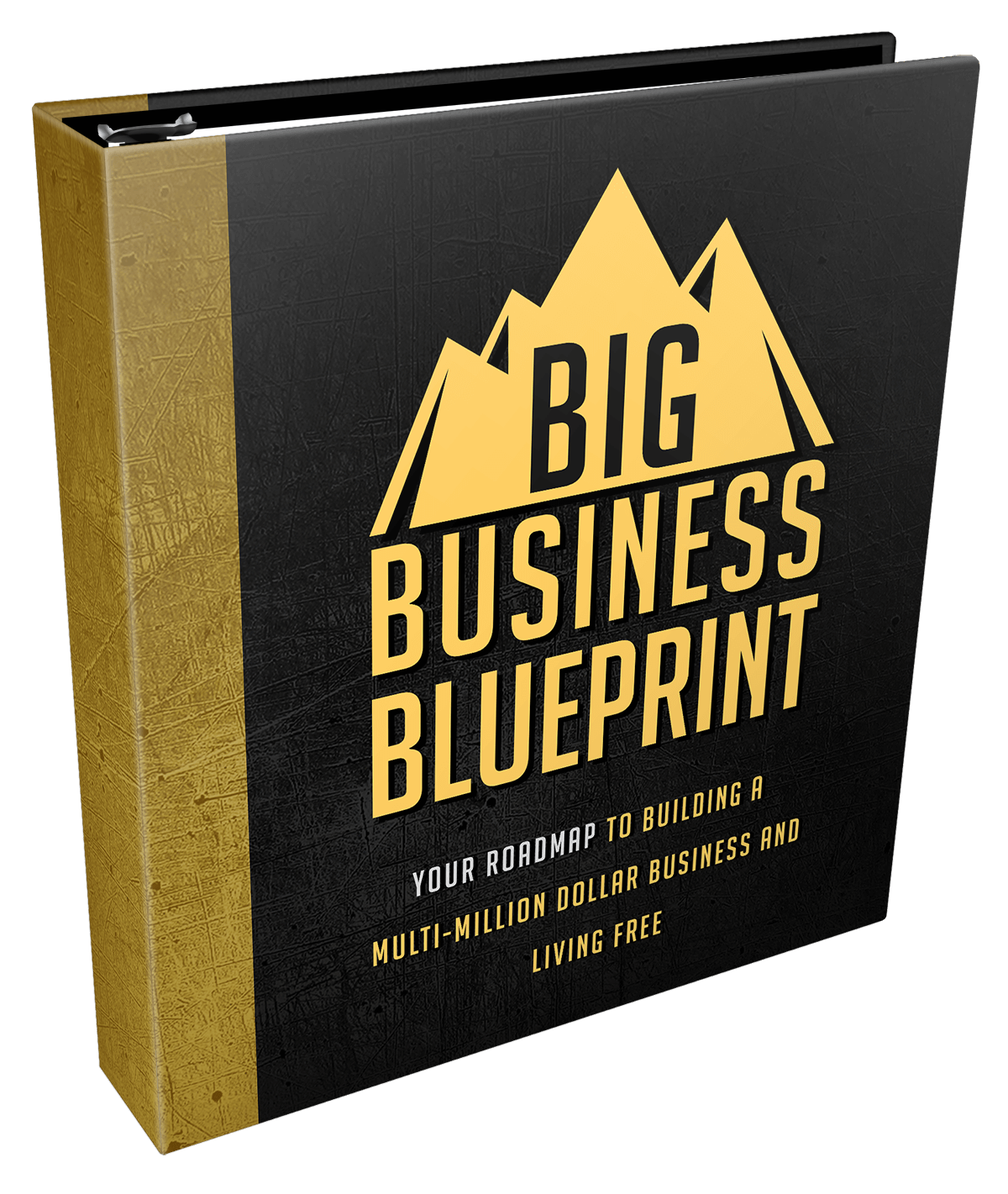 MRR Big Business Blueprint