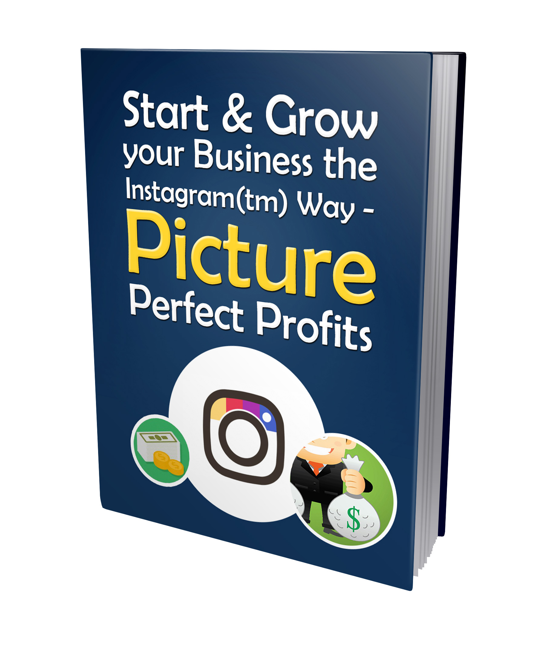 PLR Grow Your Business the Instagram