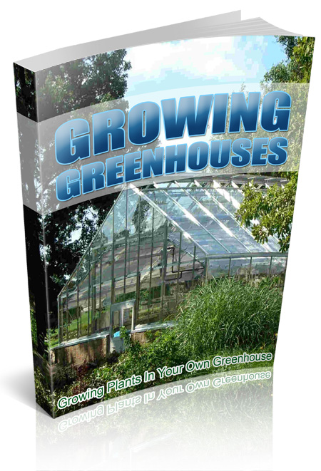 RR Grow Plants In Greenhouse