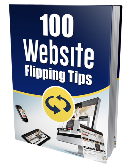 PLR 100 Website Flipping Tips