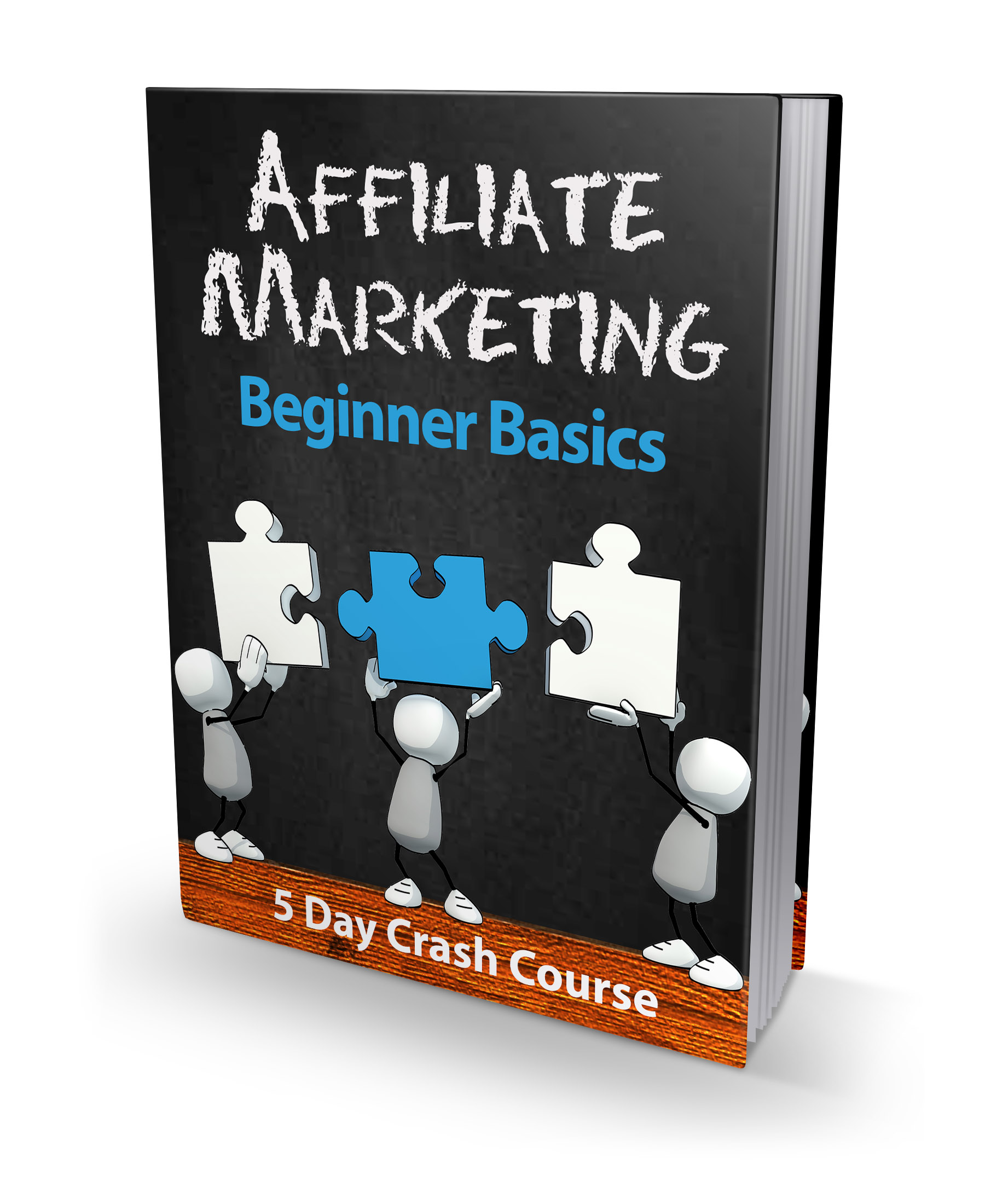 PLR Affiliate Marketing Beginner Basics Course