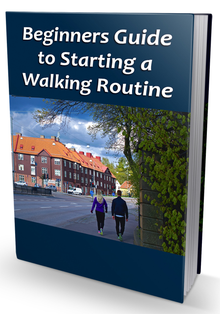 PLR Beginner Guide Walking Routine