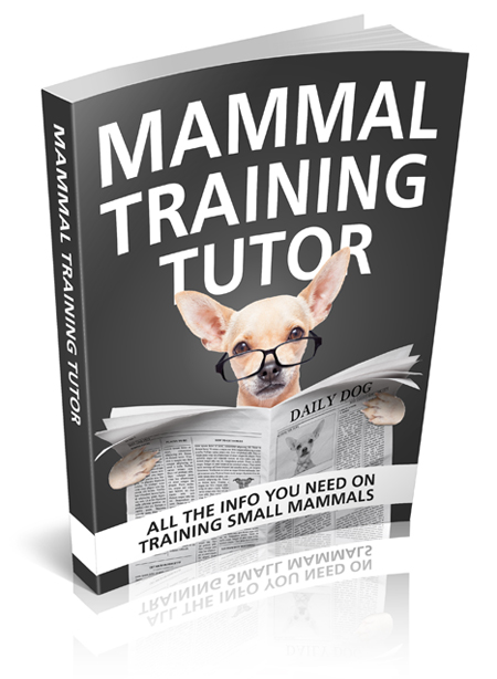 MRR Mammal Training Tutor