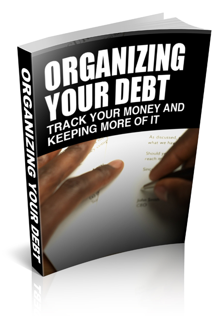 PLR Organizing Your Debt