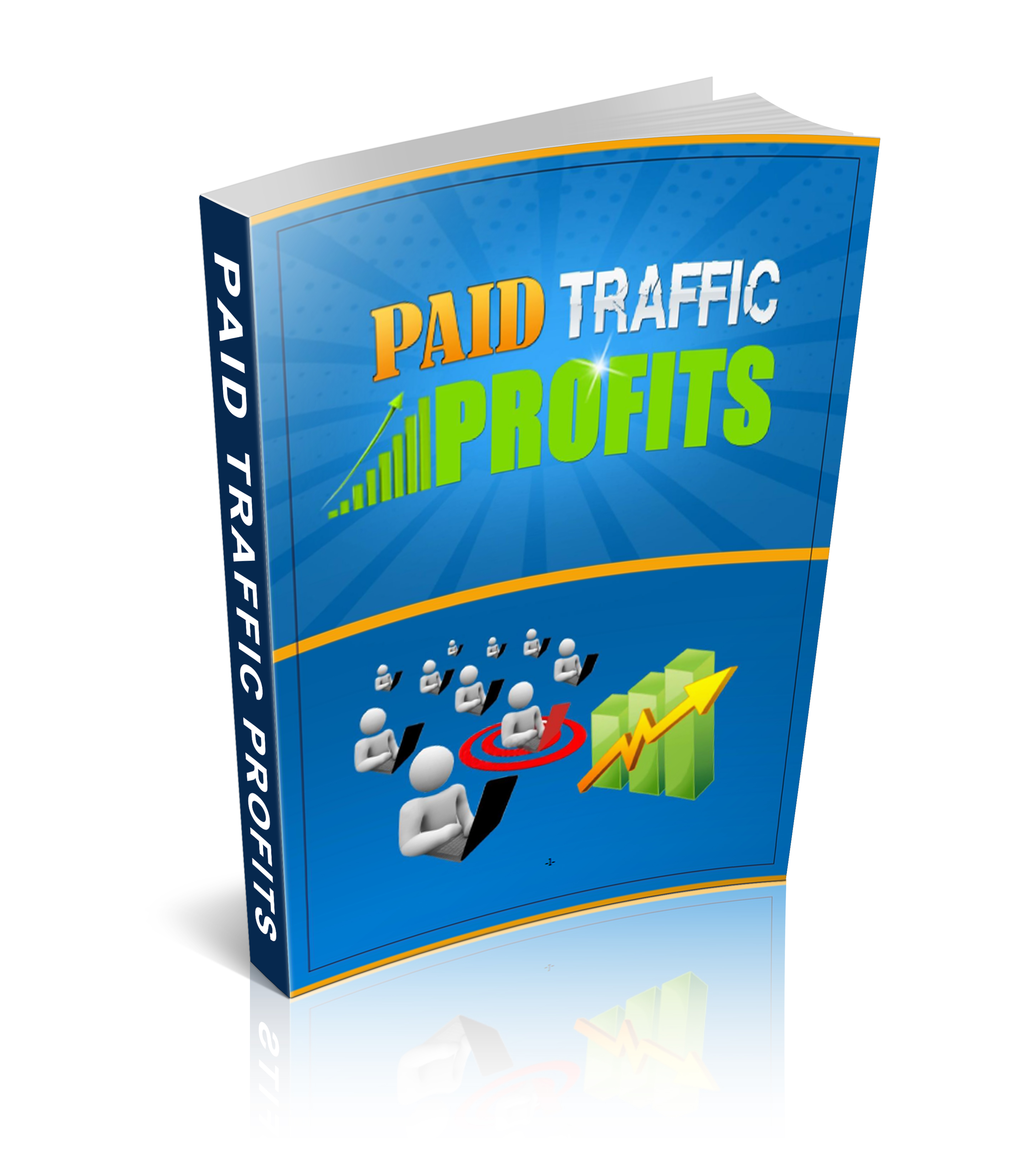 PLR Paid Traffic Profits