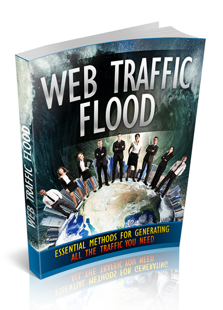 MRR Web Traffic Flood