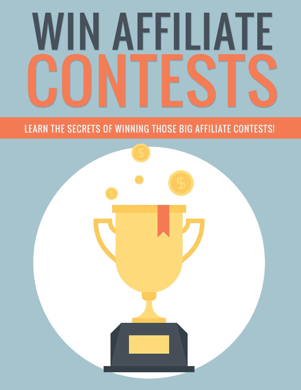 PLR Win Affiliate Contests