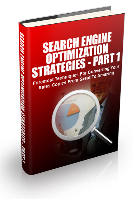 MRR Search Engine Optimization Strategies Part1